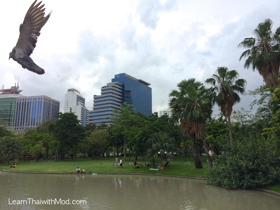 Benjasiri Park 4