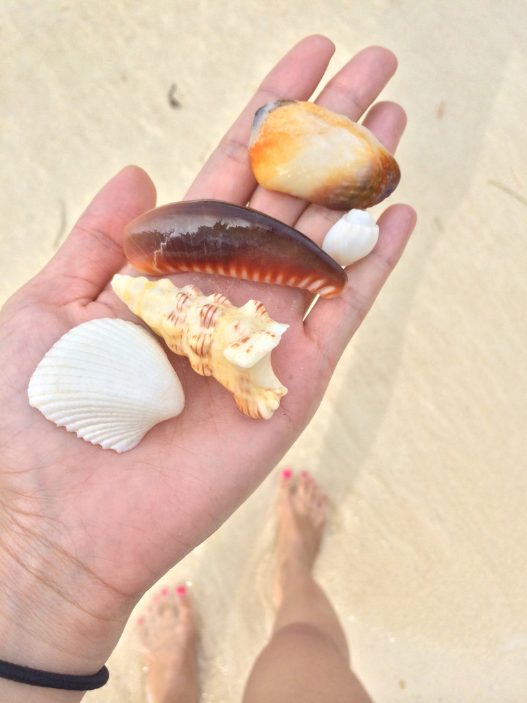 Precious treasures of the ocean, so pretty.